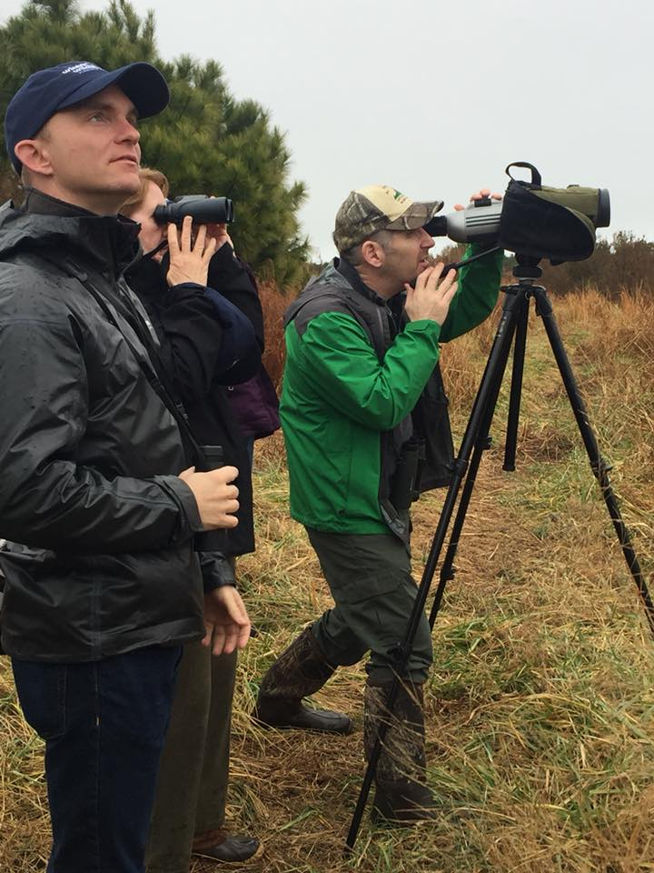 Birding at the brock environmental center