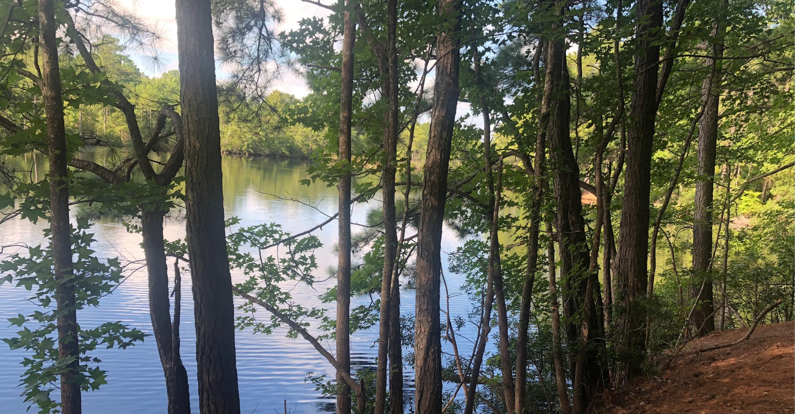 Lake Lawson/Lake Smith