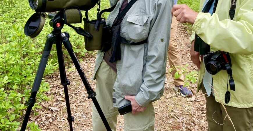 Protected: Bird Watching Private Trip