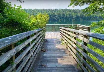 Virtual Tour and Paddle at Hoffler Creek Wildlife Preserve