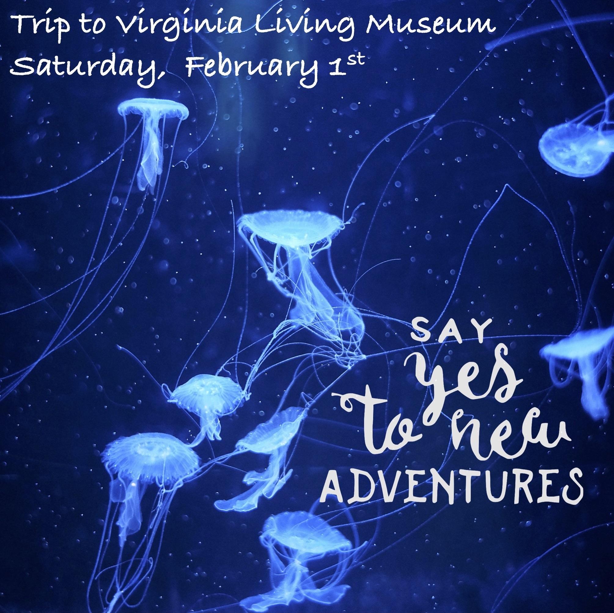 VA living museum trip