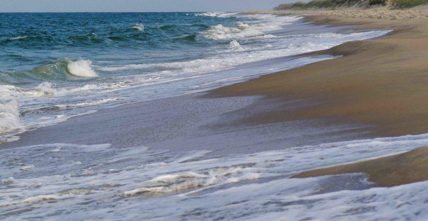 Saturday Escape #6 Explore Forest + Beach on Eastern Shore