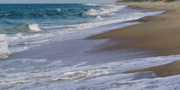Costal Virginia Beach