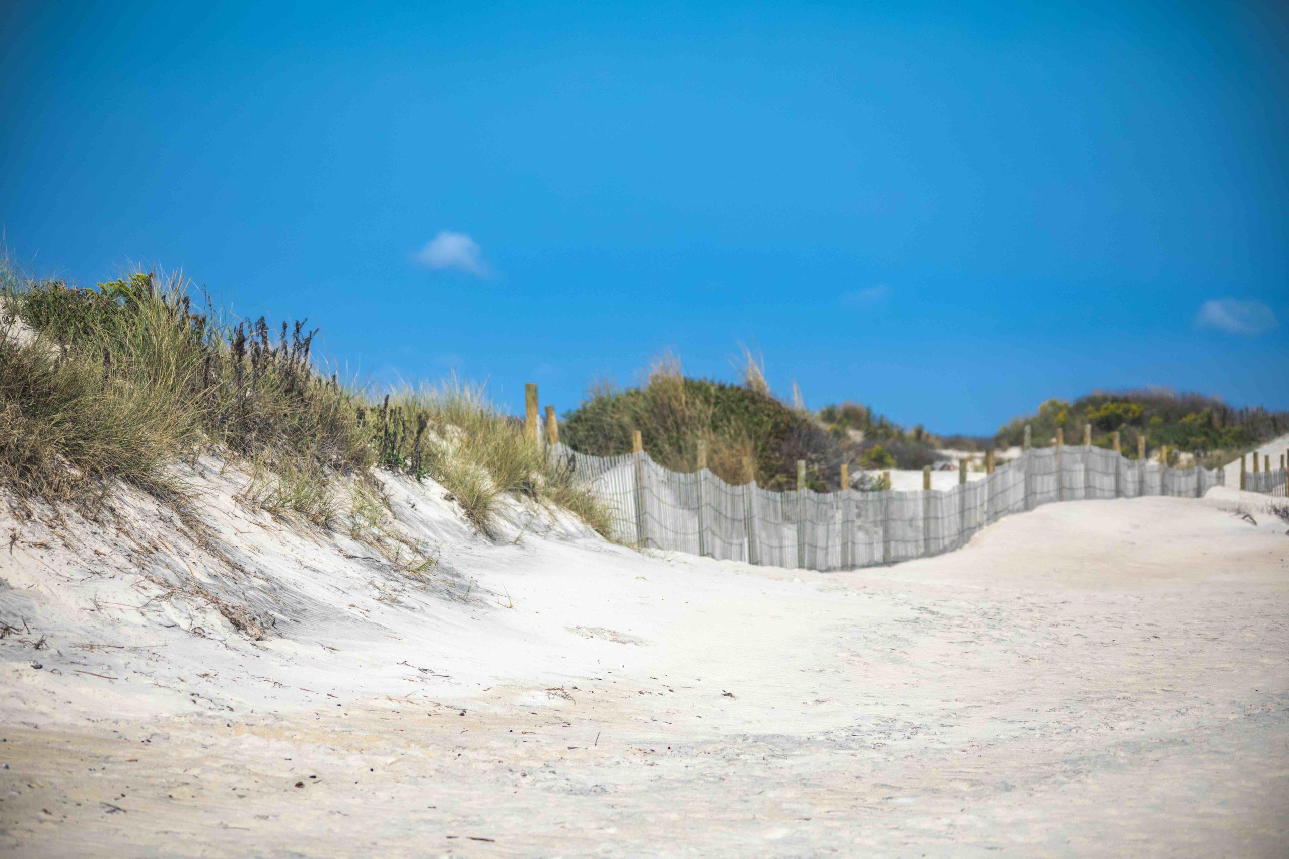 sand dunes false cape